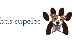 bds-supelec.fr